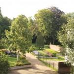 De Springertuin - overzichtsfoto